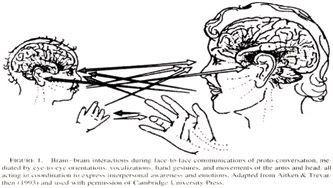brain-brain-interaction